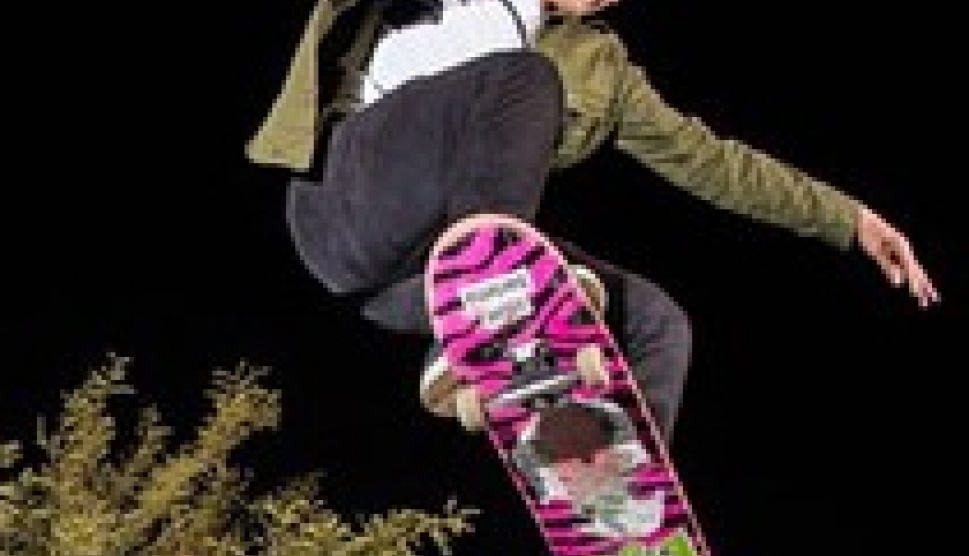 Great Deal on Complete Skateboards