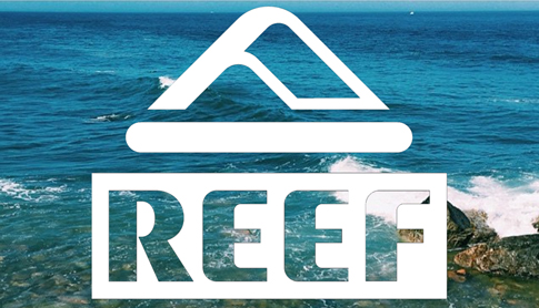 New Reef and Restocks Of Old Favorites