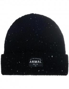 Animal Allex Beanie in Black