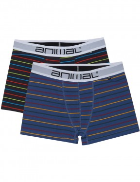 Animal Allview Underwear in Assorted