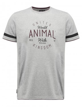 Animal Hoops Short Sleeve T-Shirt in Grey Marl