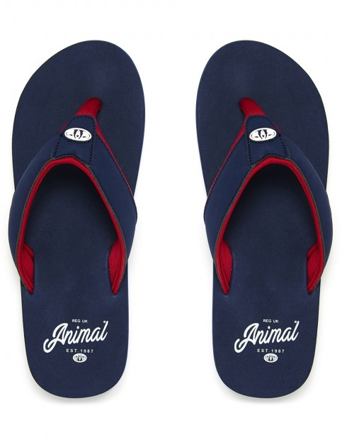 Animal Bazil Flip Flops in Dark Navy