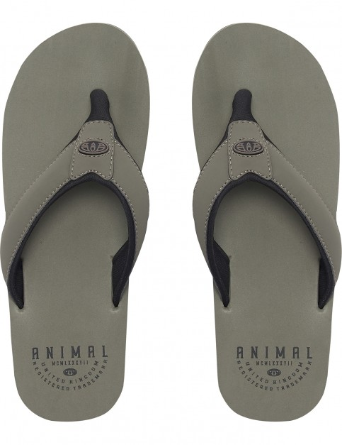 Animal Bazil Flip Flops in Dusty Olive Green