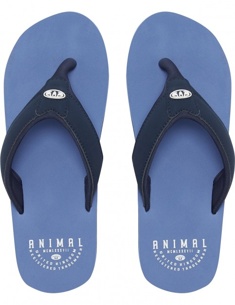 Animal Bazil Flip Flops in Lethal Blue