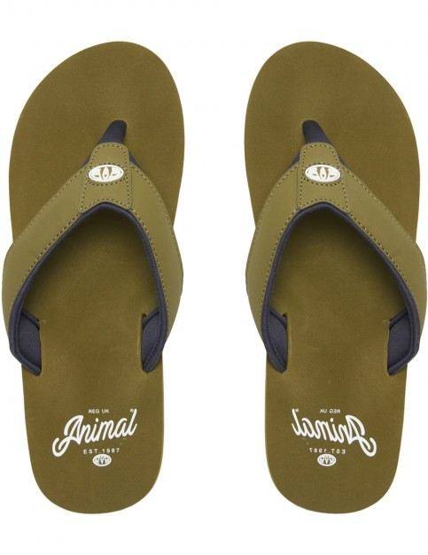 Animal Bazil Flip Flops in Lizard Green