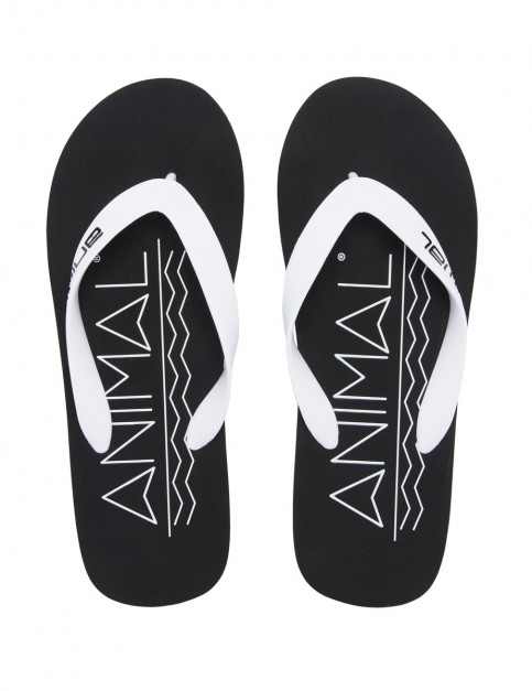 Animal Costaz Logo Flip Flops in Black