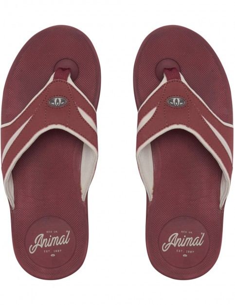 Animal Fader Flip Flops in Andorra Red
