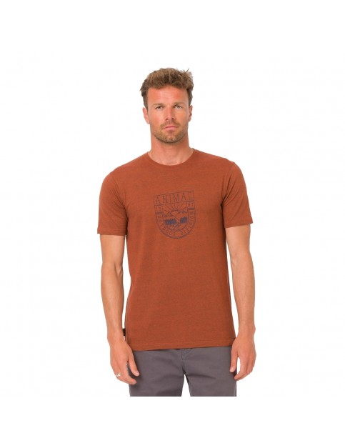 Animal Isle Short Sleeve T-Shirt in Fireside Orange Marl