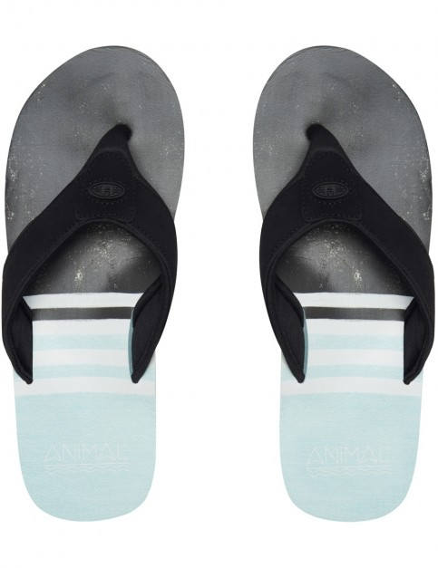 Animal Jekyl Swim Flip Flops in Clearwater Blue