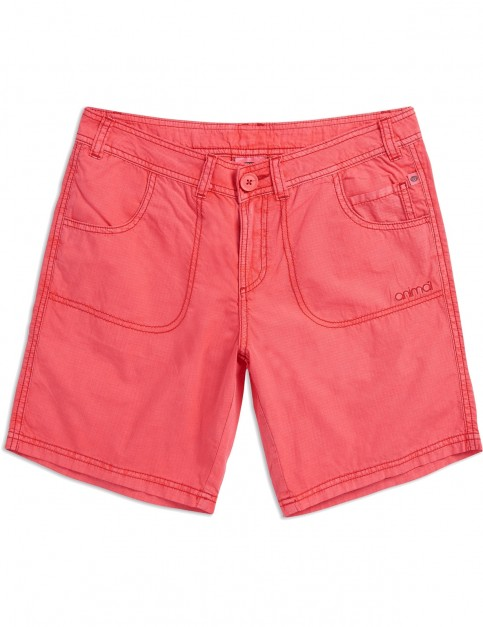 Animal Late Night Shorts in Calypso Coral Red