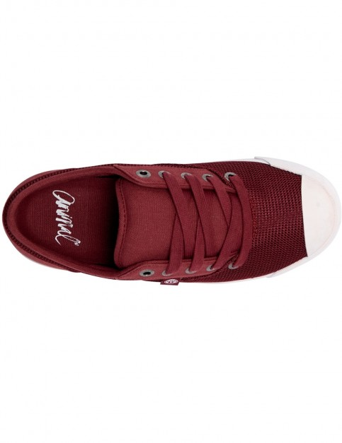Animal Marcy Trainers in Bordeaux Red