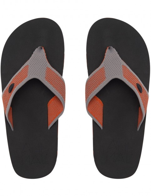 Animal Marti Flip Flops in Pumpkin Orange