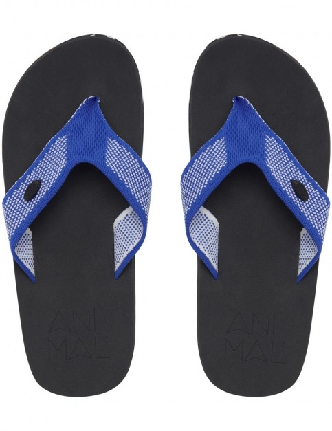 Animal Marti Flip Flops in Snorkel Blue