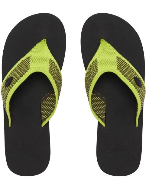 Animal Martina Flip Flops in Aquilone Yellow