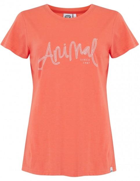 Animal Reel Me In Short Sleeve T-Shirt in Melon Orange Marl