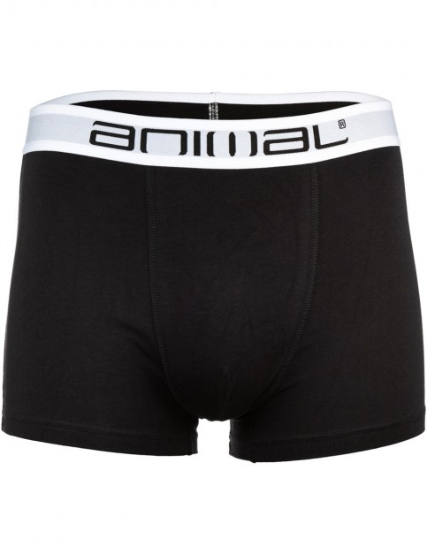 Animal Safe 3 Pack Underwear in Assorted