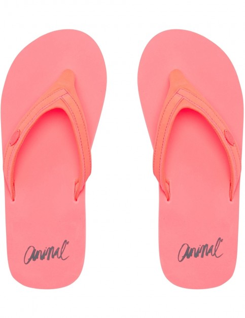 Animal Swish Slim Block Flip Flops in Neon Orange