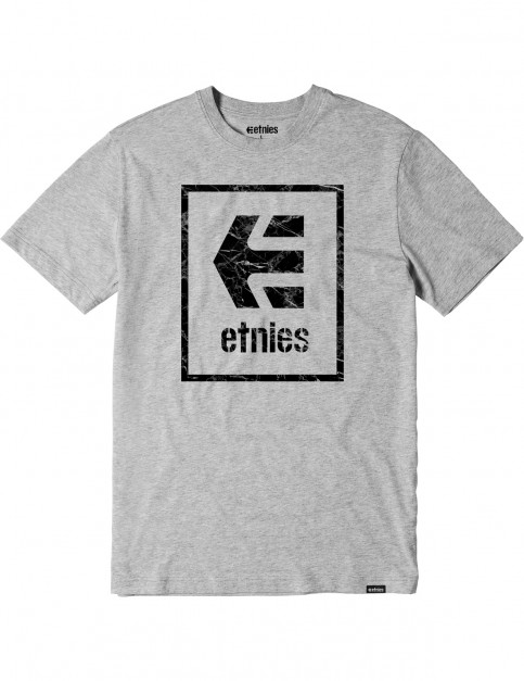 Etnies Bloodline Icon Short Sleeve T-Shirt in Grey/Heather