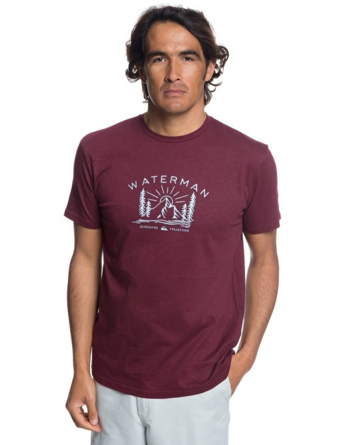 Quiksilver Back to Nature Short Sleeve T-Shirt in Tawny Port