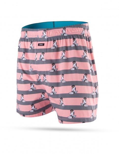 Stance Monkey Stripes Underwear in Multi