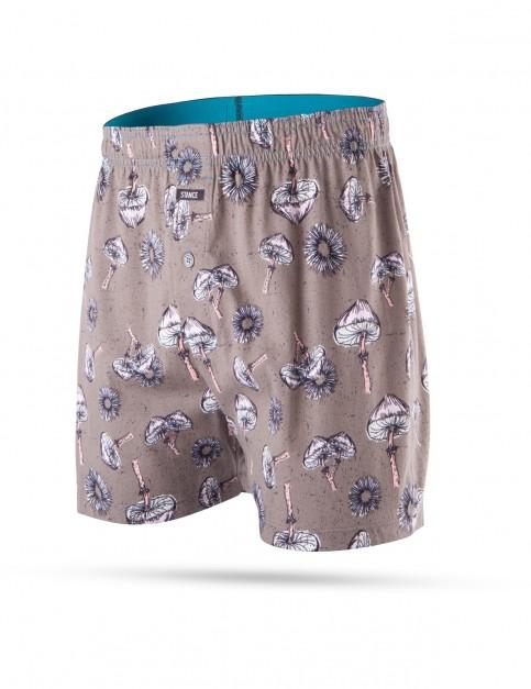 Stance Shrooms Underwear in Grey