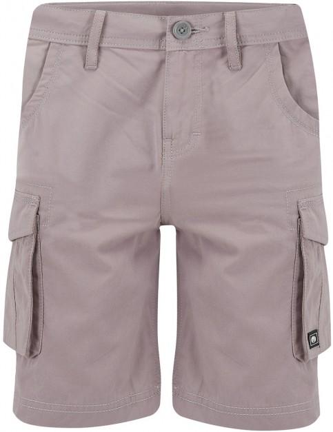 Animal Bro Shorts in Steel Grey