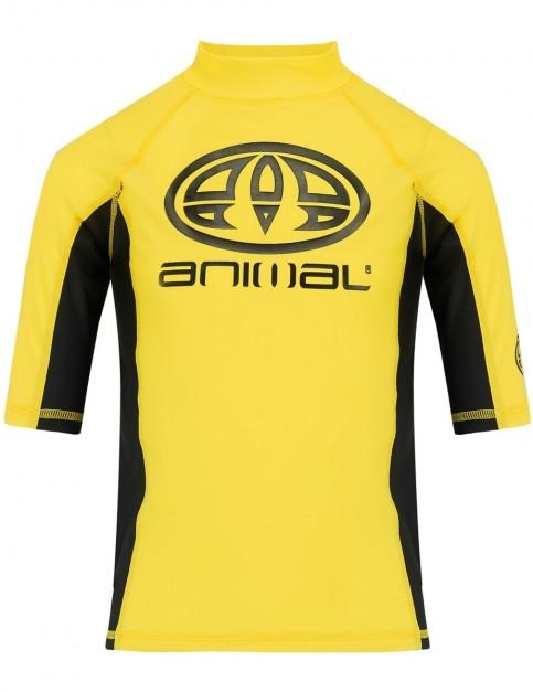 Animal Hiltern Short Sleeve Rash Vest in Bright Yellow